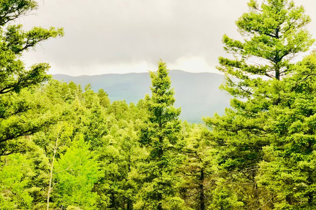 31 South Vail Overlook Angel Fire, NM 87710