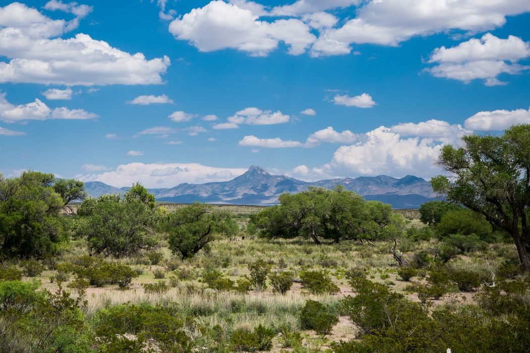 Magic Ranch Deming, NM 88030