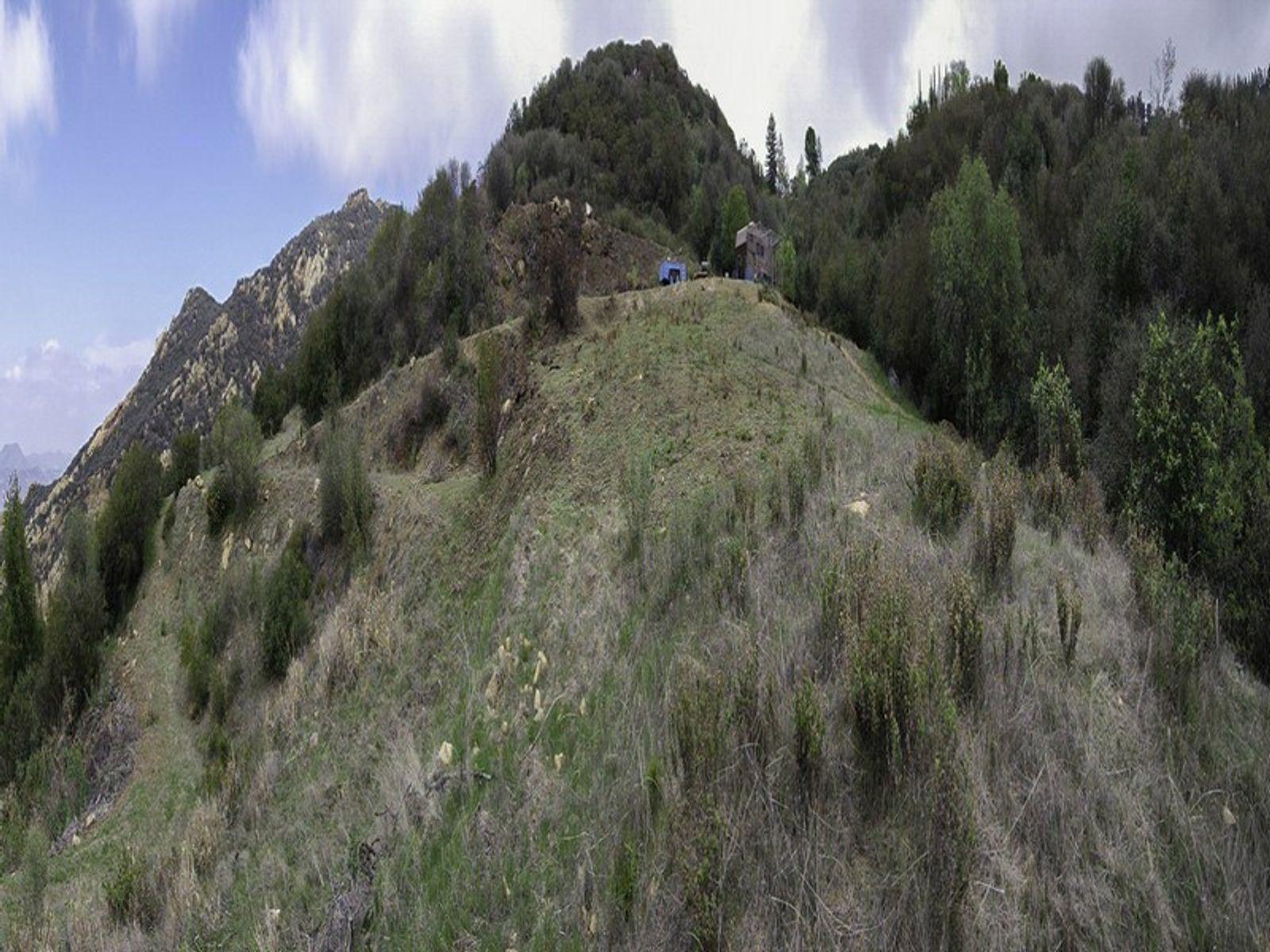 Approx.16 acres of Mountain/Ocean Views
