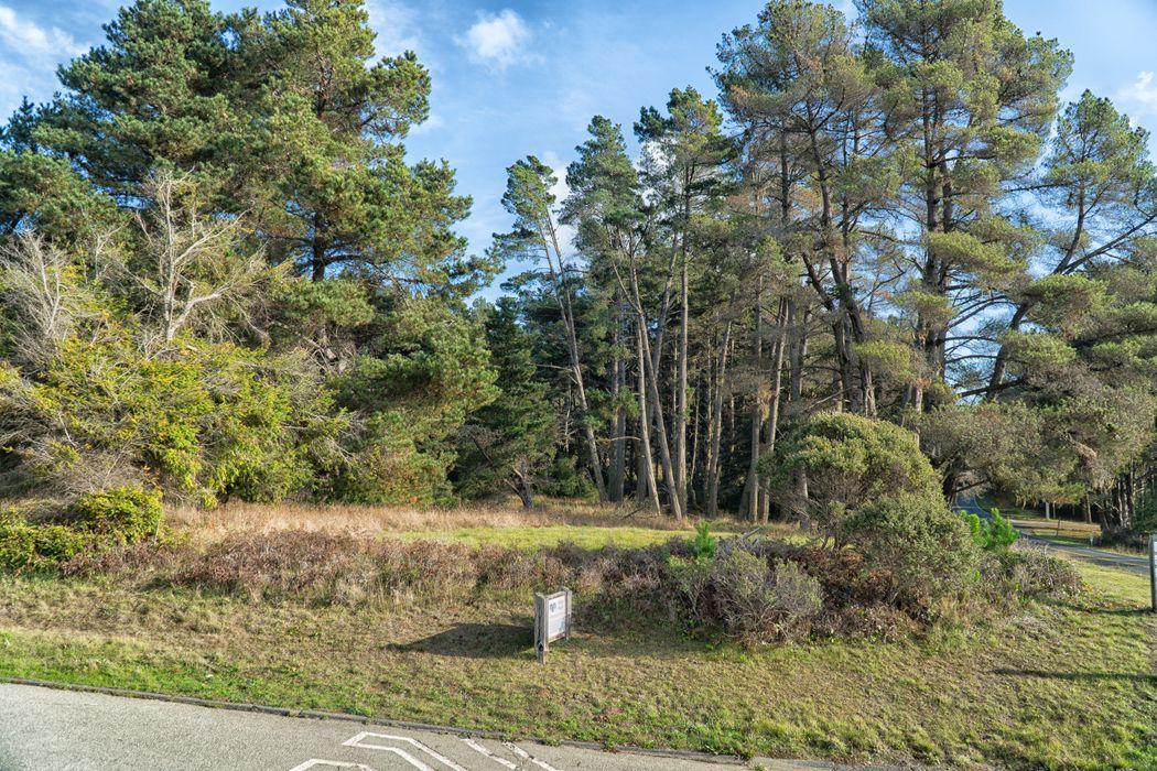 130 Spur Close The Sea Ranch, CA 95497