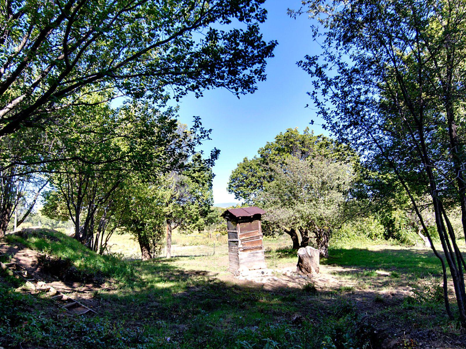 119 A & B + 121 Camino Del Rincon