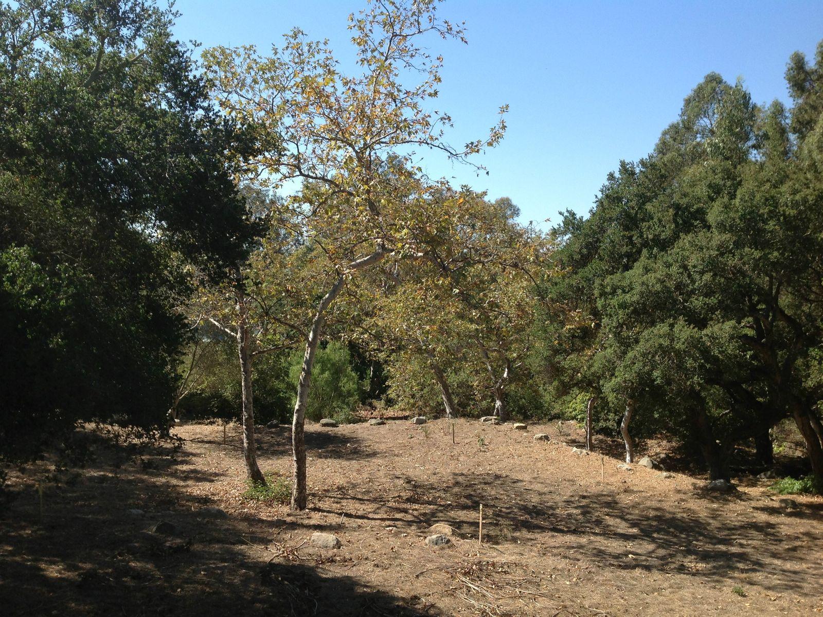 Rare Montecito Parcel