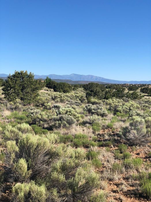 141 Paseo Aragon Lot 59 Santa Fe, NM 87506