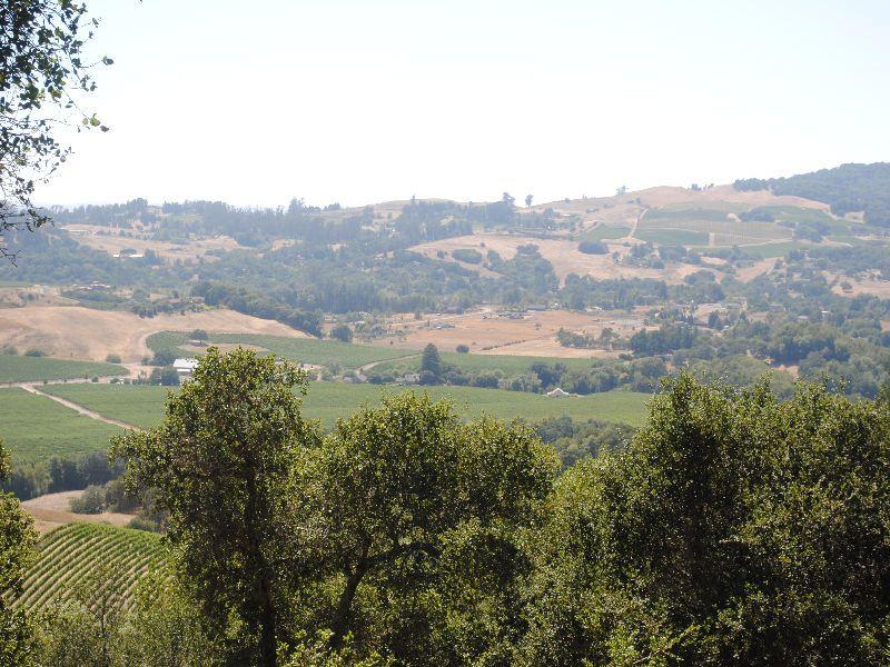 View Parcel