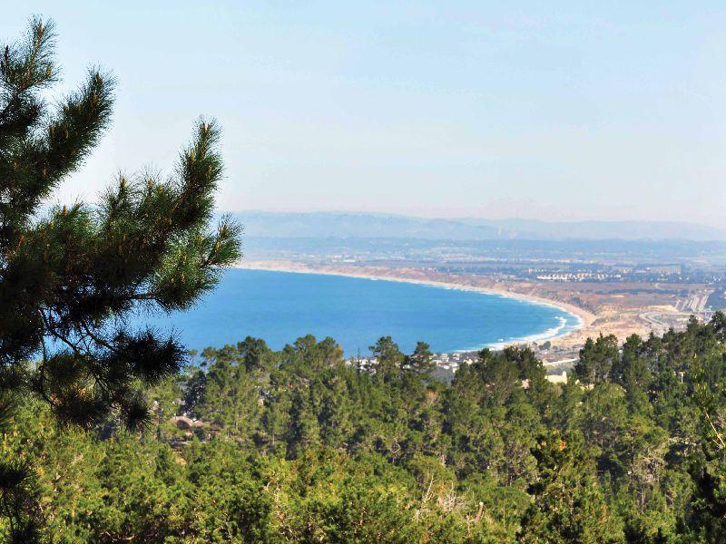 Loma Alta Views