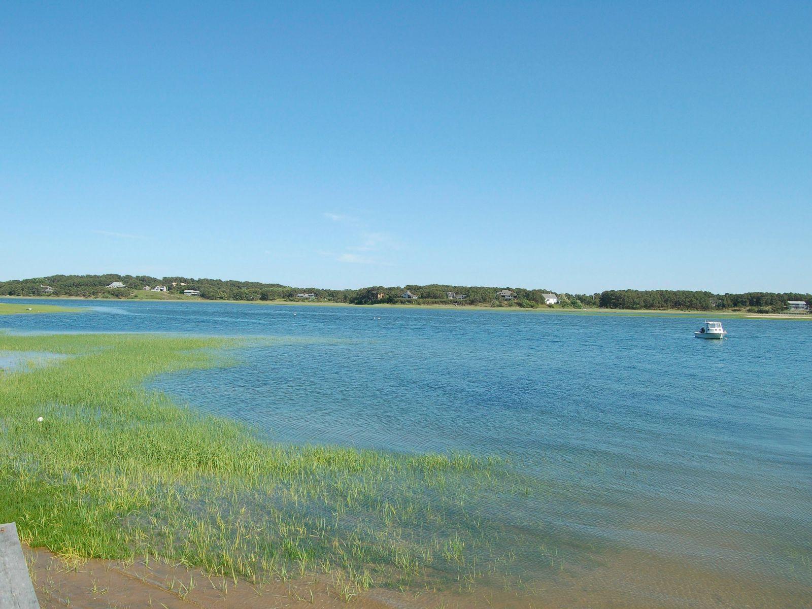 Wellfleet Pleasant Point Year-Round Home