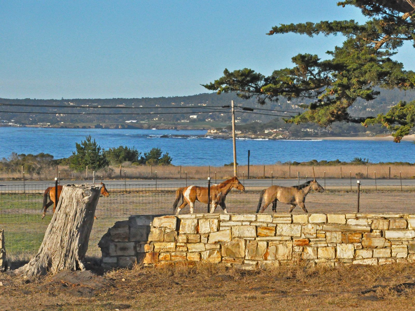 The Stone House at Point Lobos