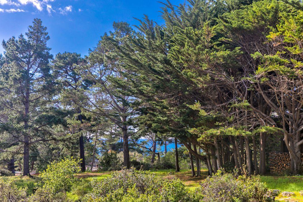 1634 Sonado Road Pebble Beach, CA 93953