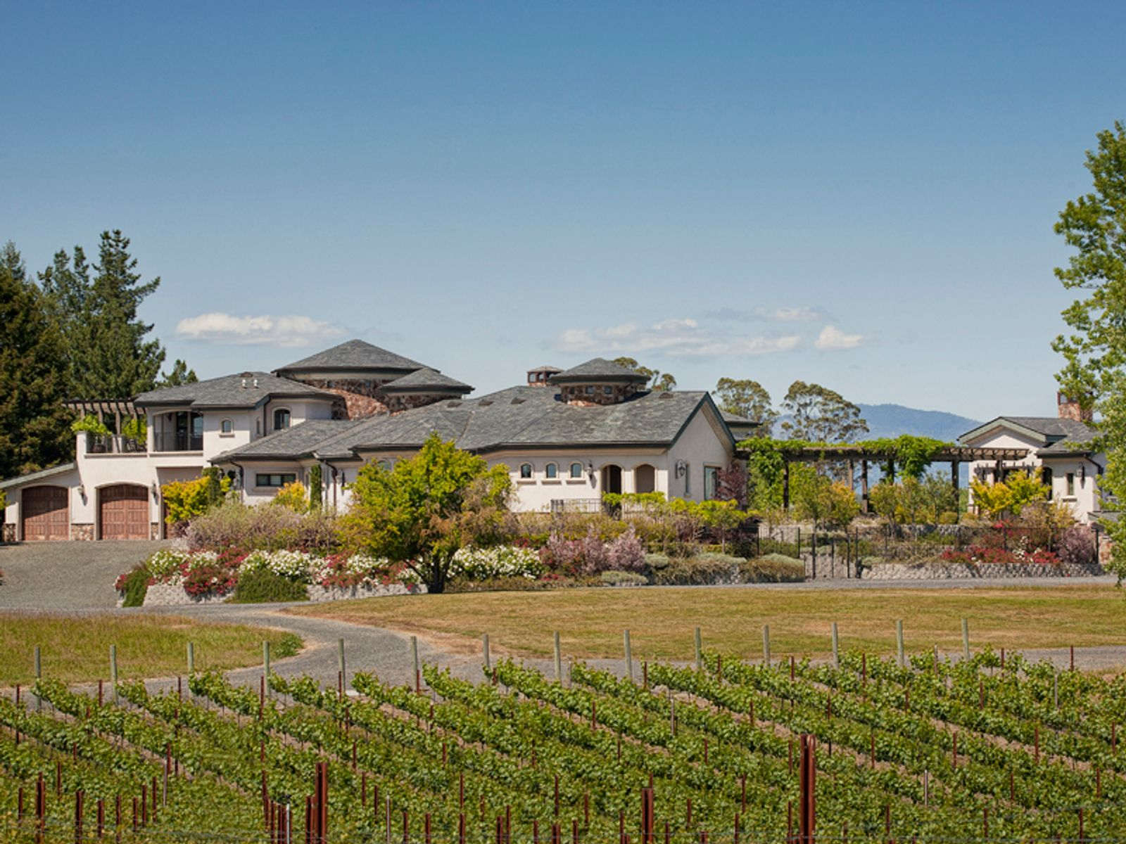 Spectacular Equestrian Vineyard Estate, Windsor CA Single Family Home - Sonoma - Napa Real Estate