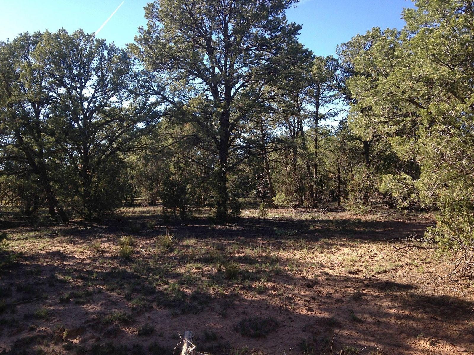 Apache Ridge, Tract 2-B; Mescalero Ridge