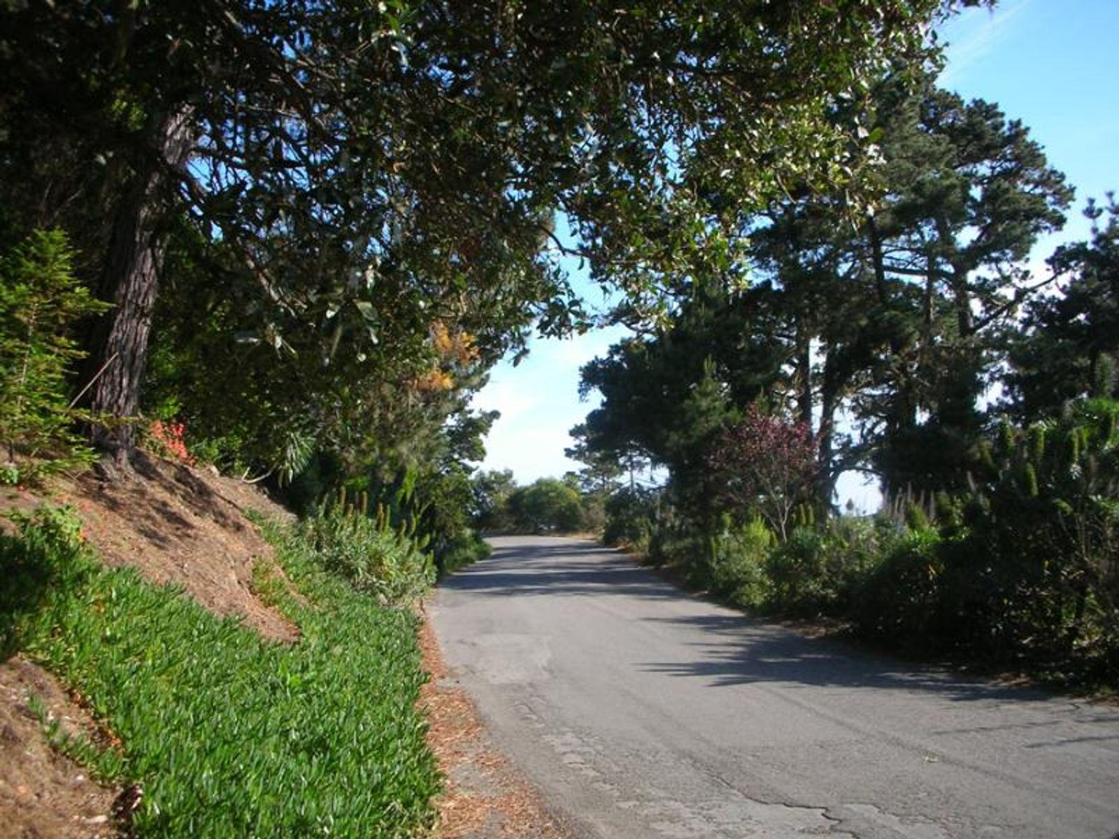 Exclusive Carmel Highlands Lot