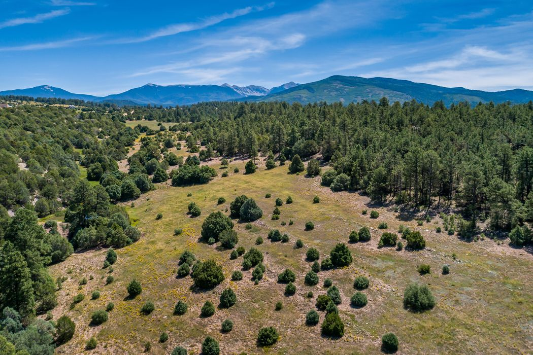 County Road 79 Tract F Truchas, NM 87578