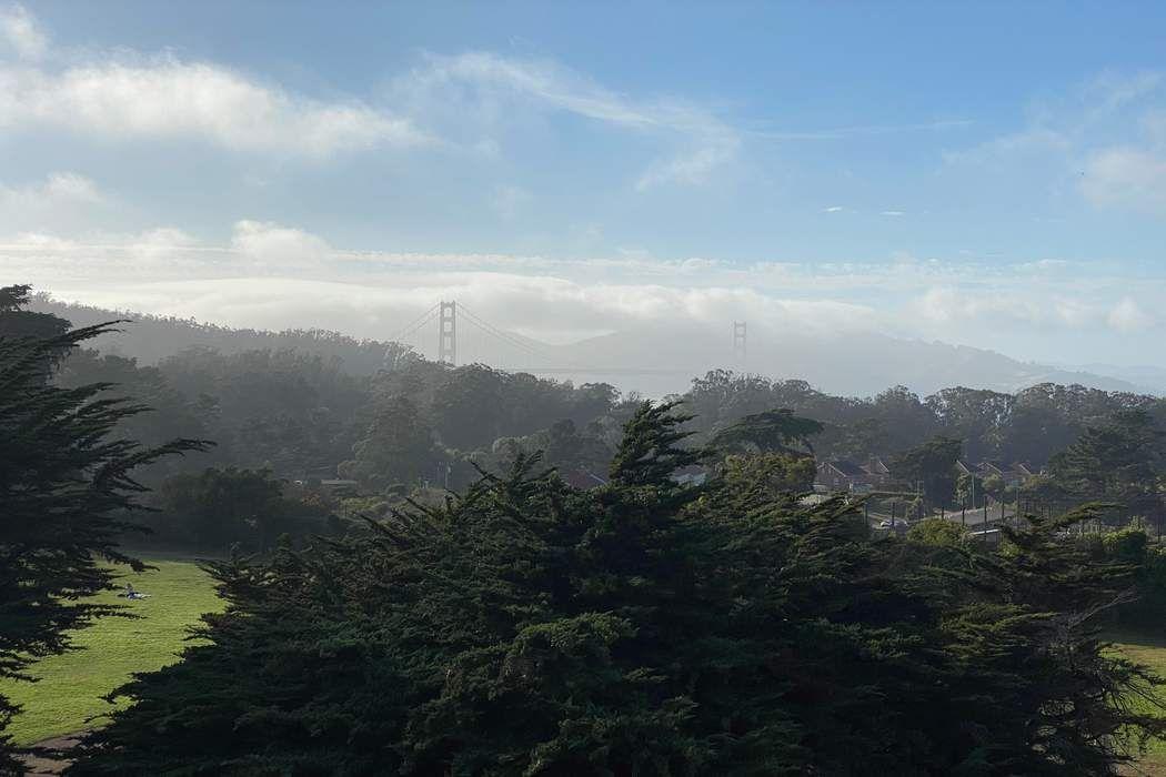 3467 Pacific Ave San Francisco, CA 94118