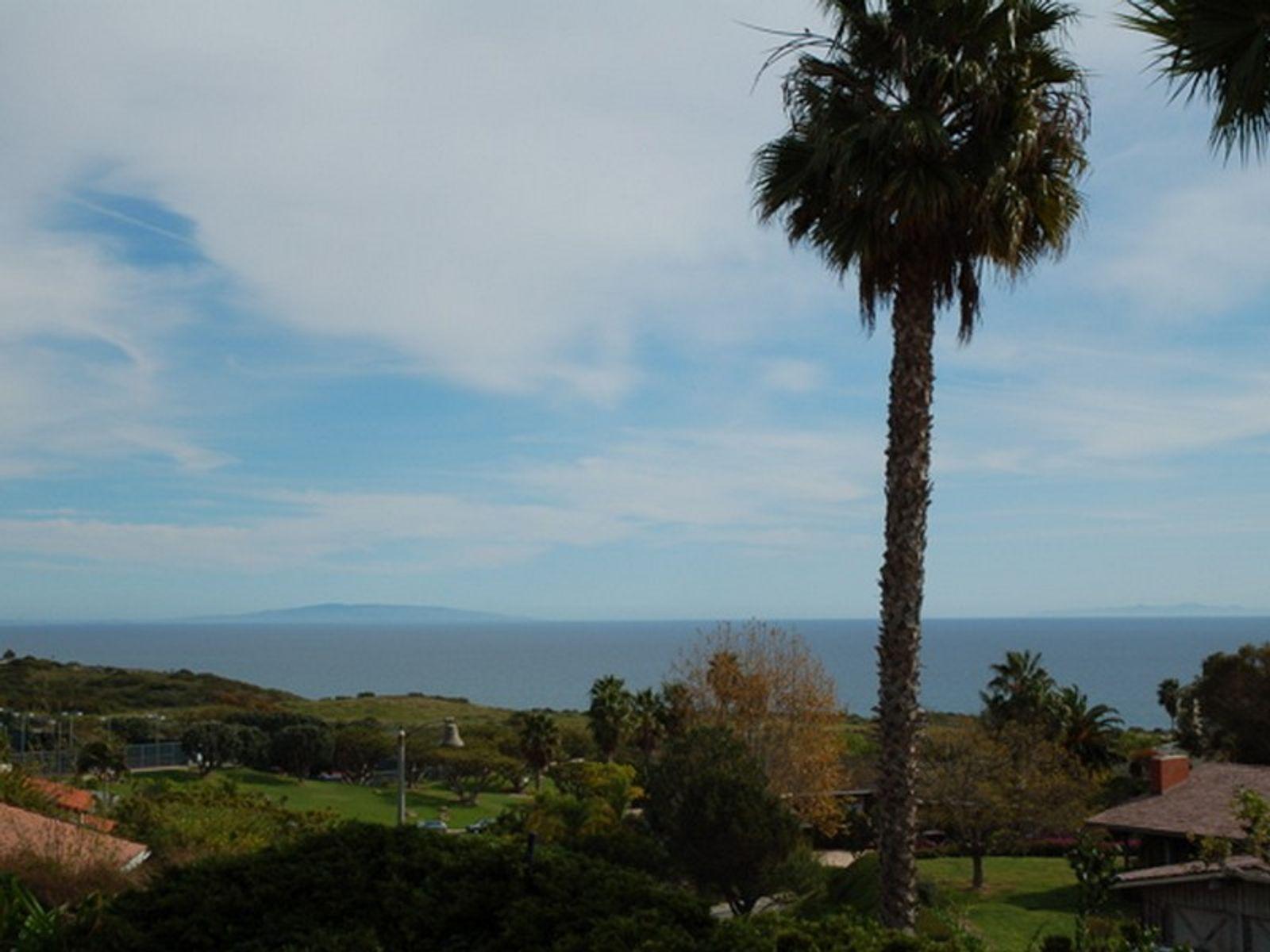 Ocean View Contemporary
