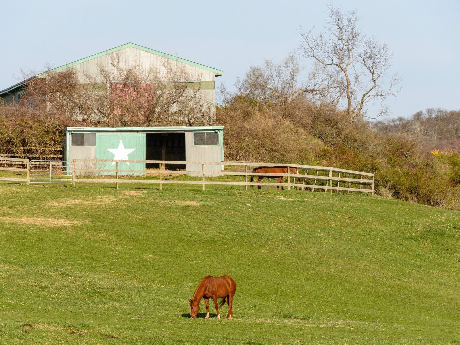The Startop Ranch Estate