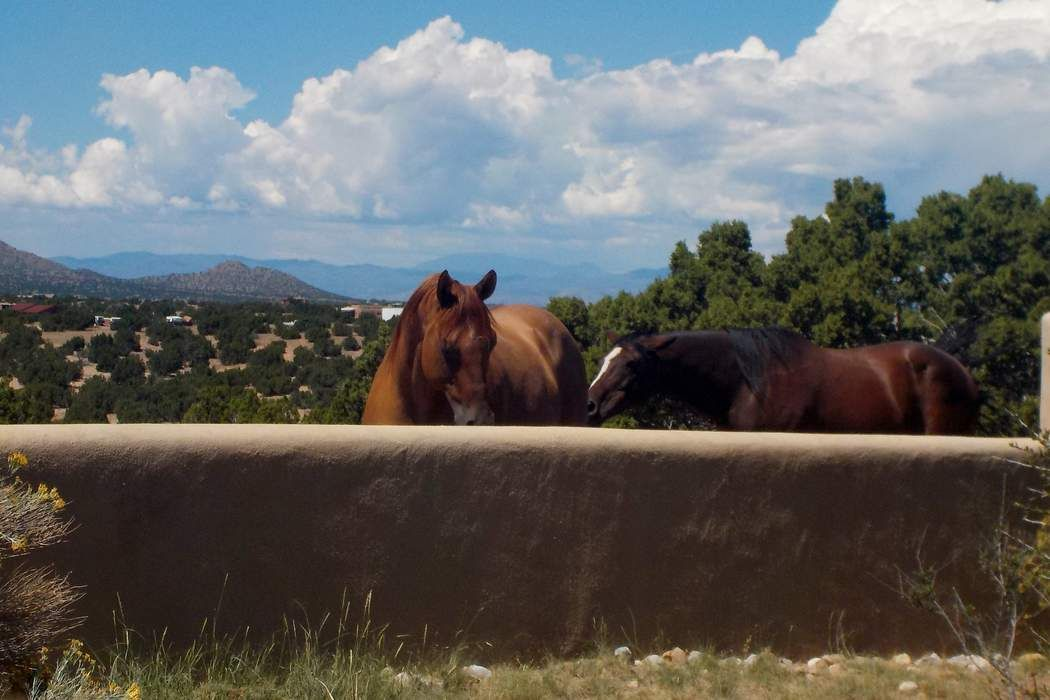 263 Camino Los Abuelos Santa Fe, NM 87508