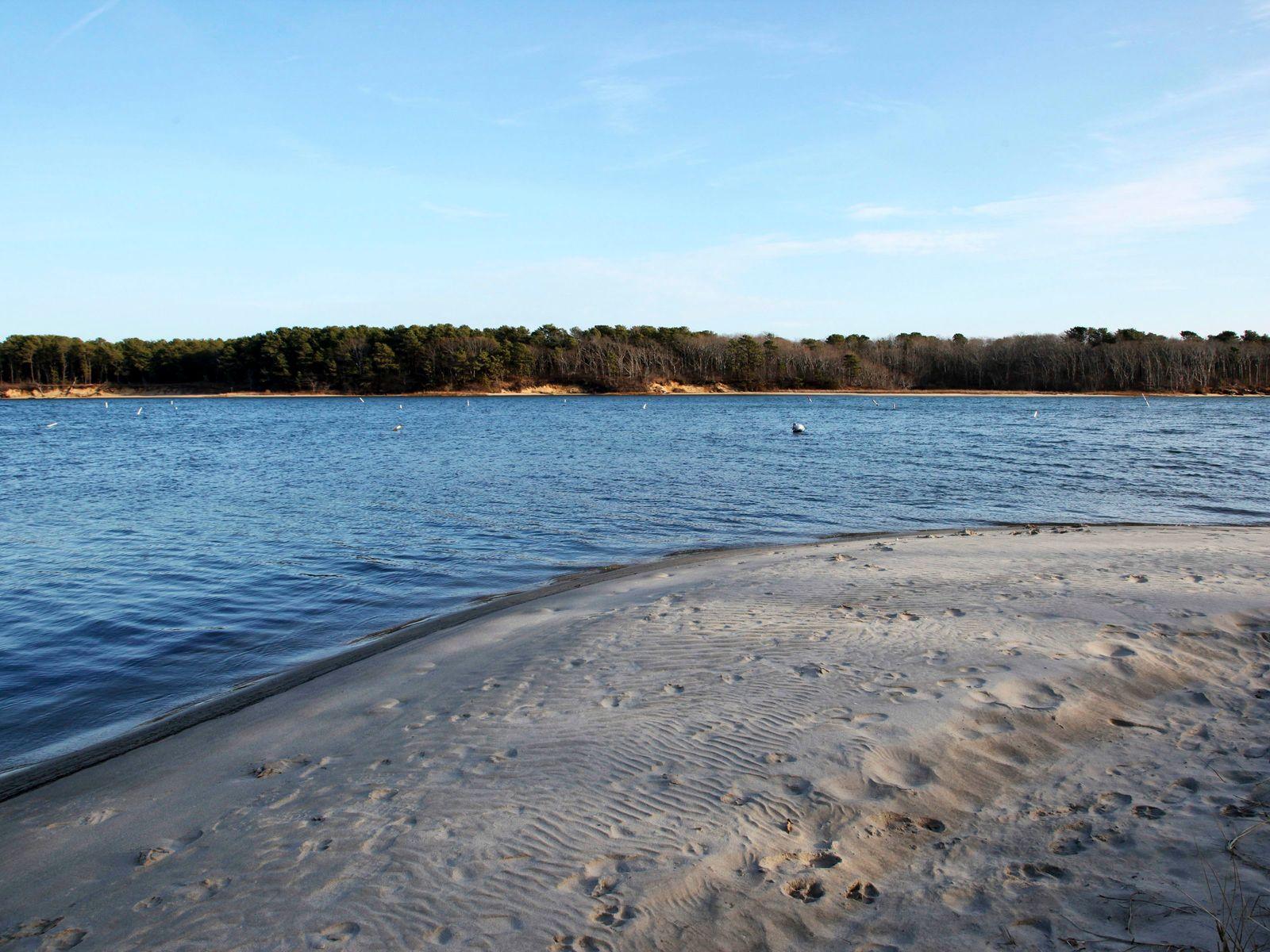 Seacoast Shores Ranch