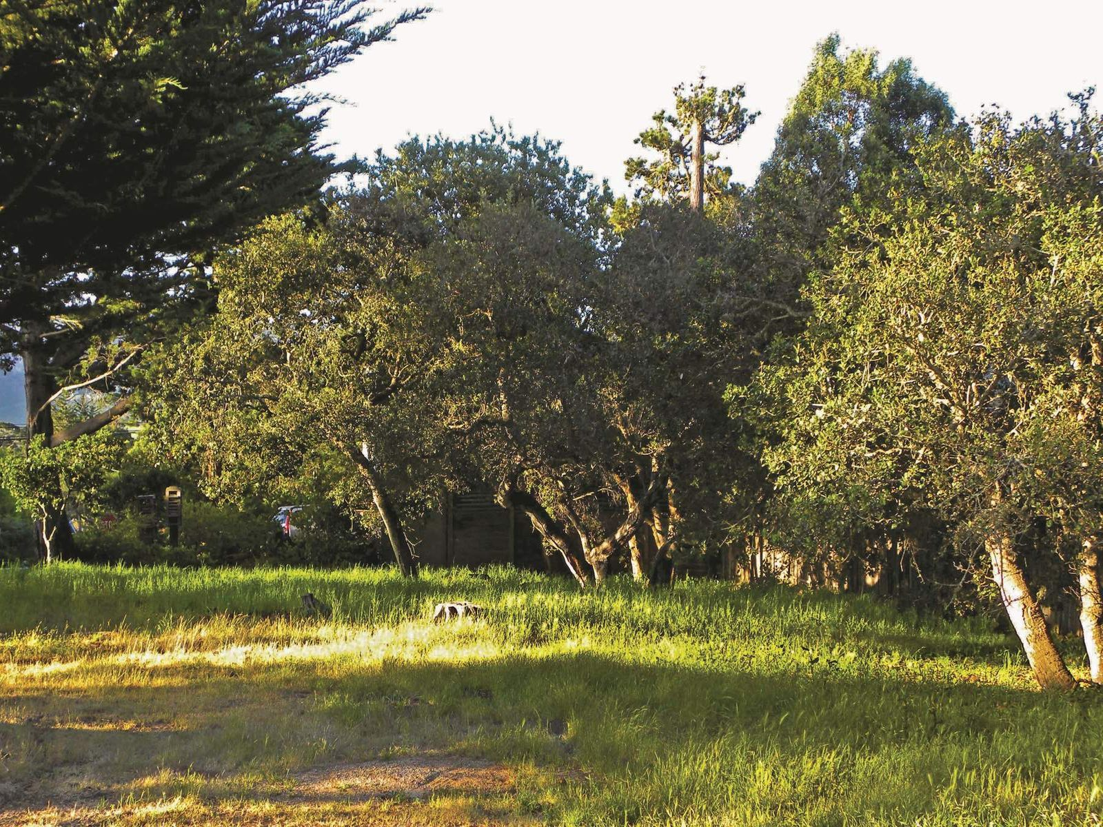 Carmel Investment, Carmel-By-The-Sea CA Acreage / Lots - Monterey Real Estate