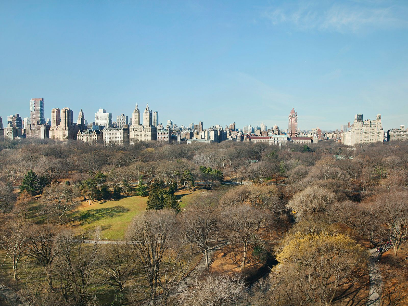 Open Views on Central Park