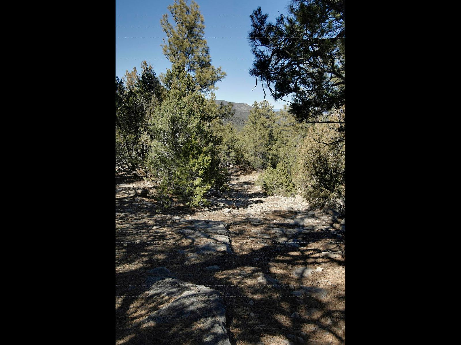 Las Vegas Mountain Ranch