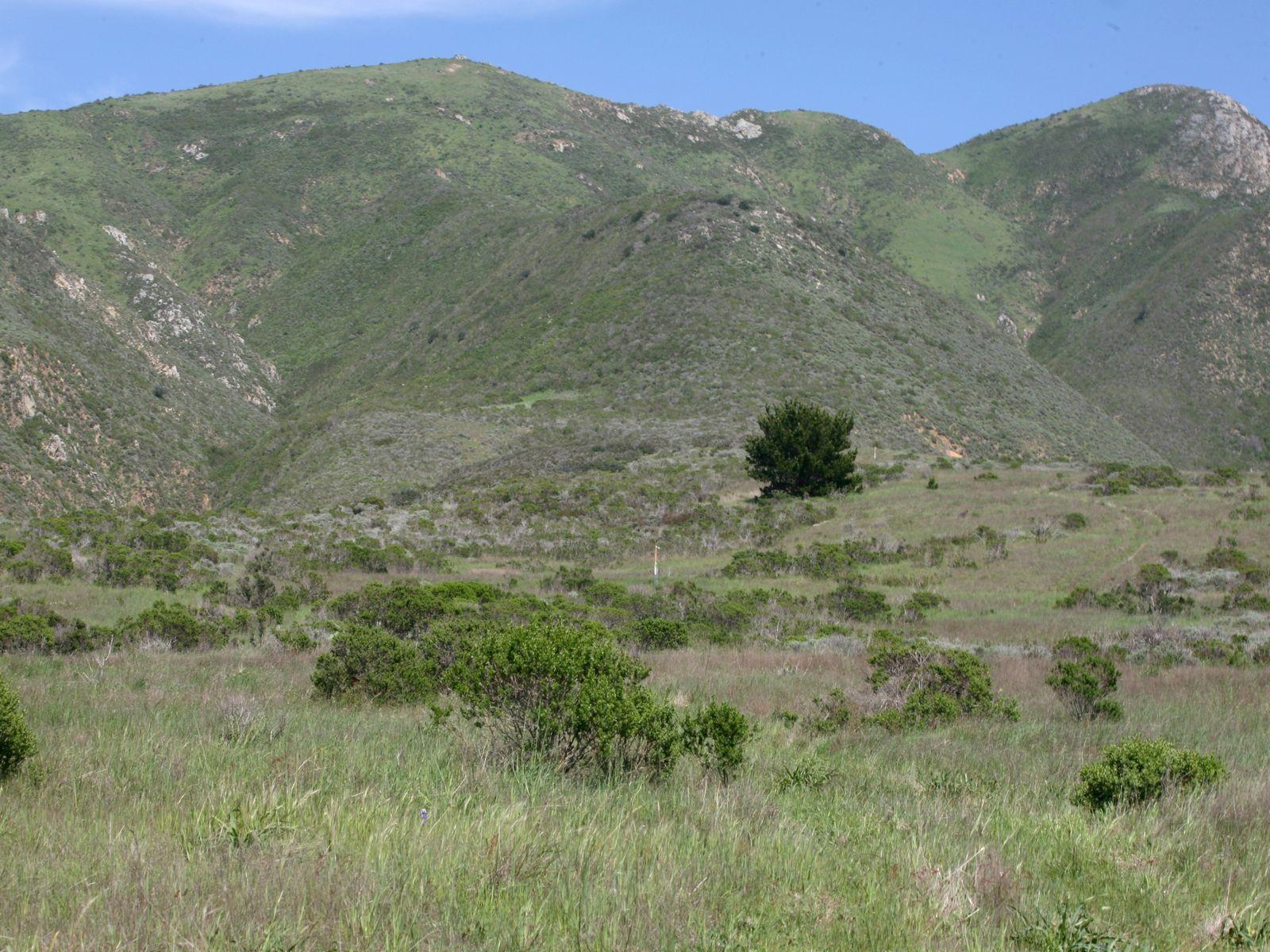 Victorine Ranch
