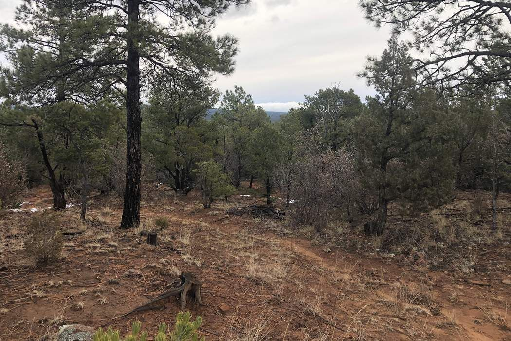 0 Glory Lane Glorieta, NM 87535