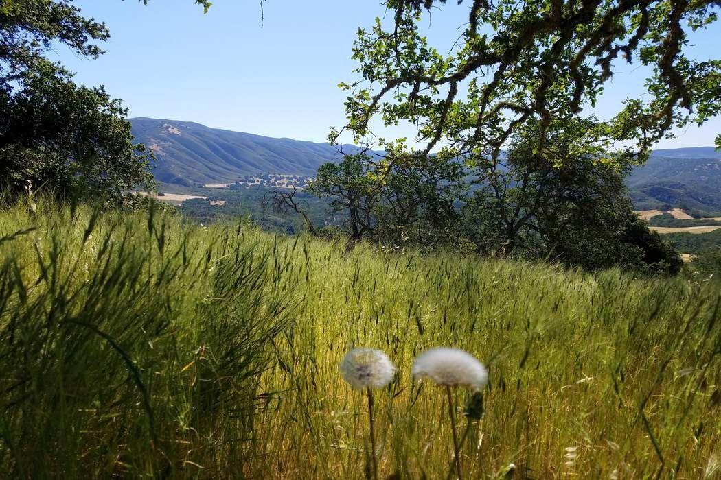 40000 East Carmel Valley Road Carmel Valley, CA 93924