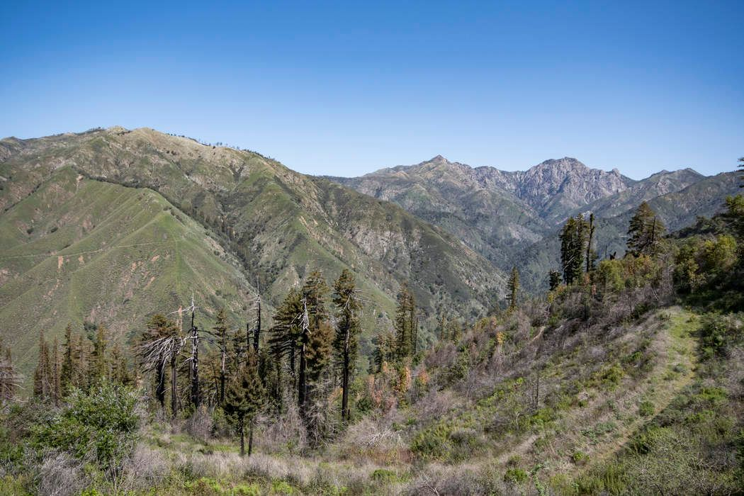 8 Coast Ridge Road Big Sur, CA 93920