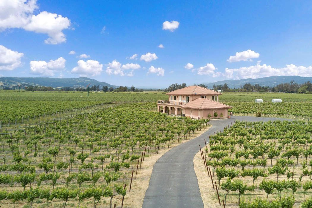 Sonoma Valley Vineyard Estate