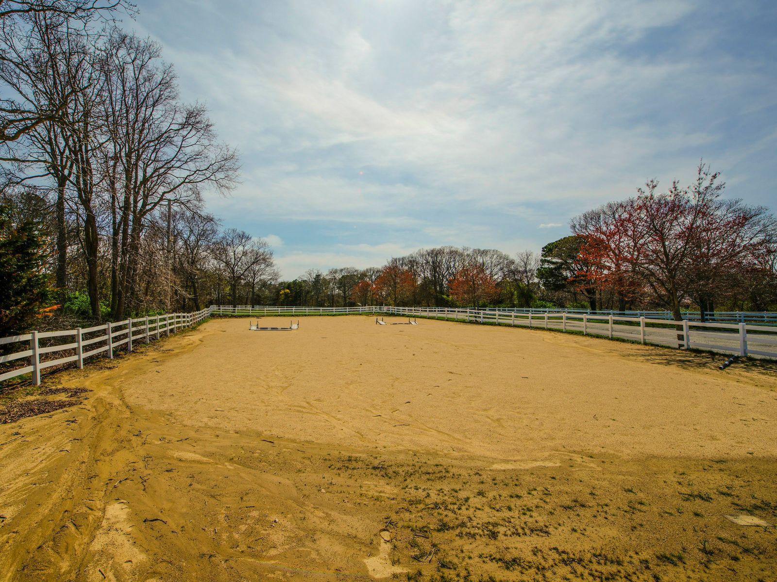 Ocean View Horse Farm