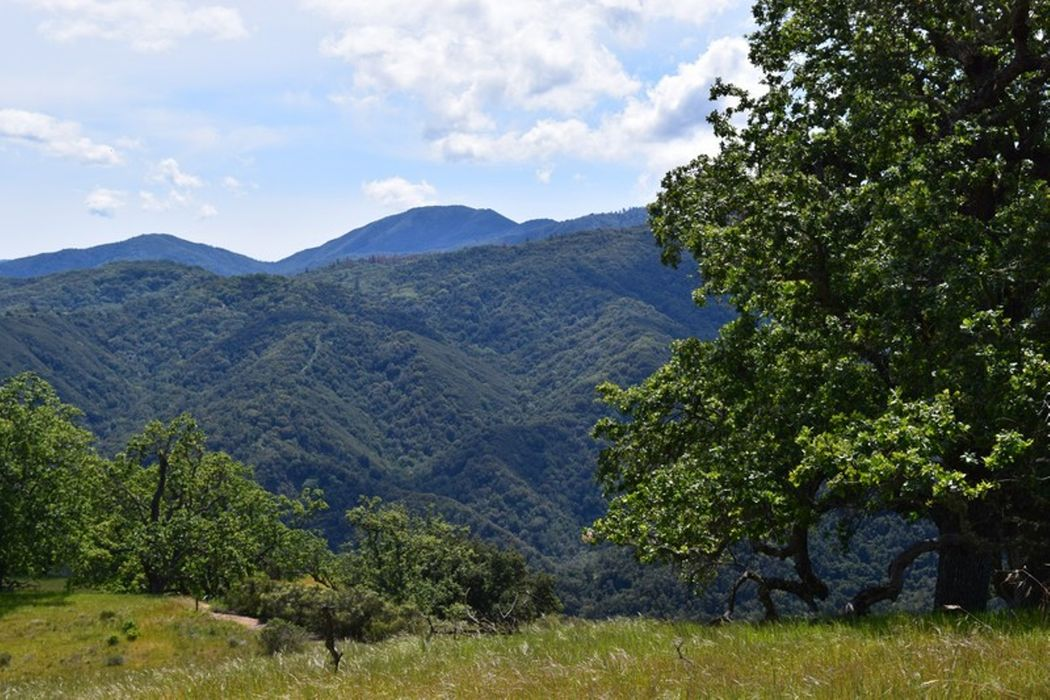 13 Long Ridge Trail Carmel, CA 93923