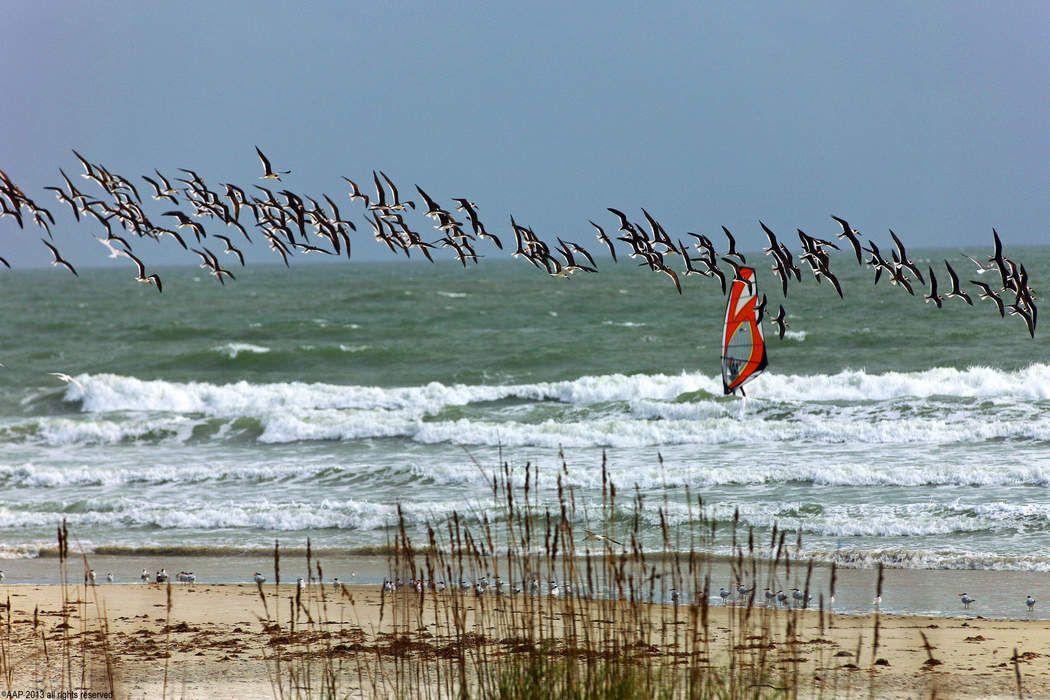 2700 N Ocean Dr Singer Island, FL 33404