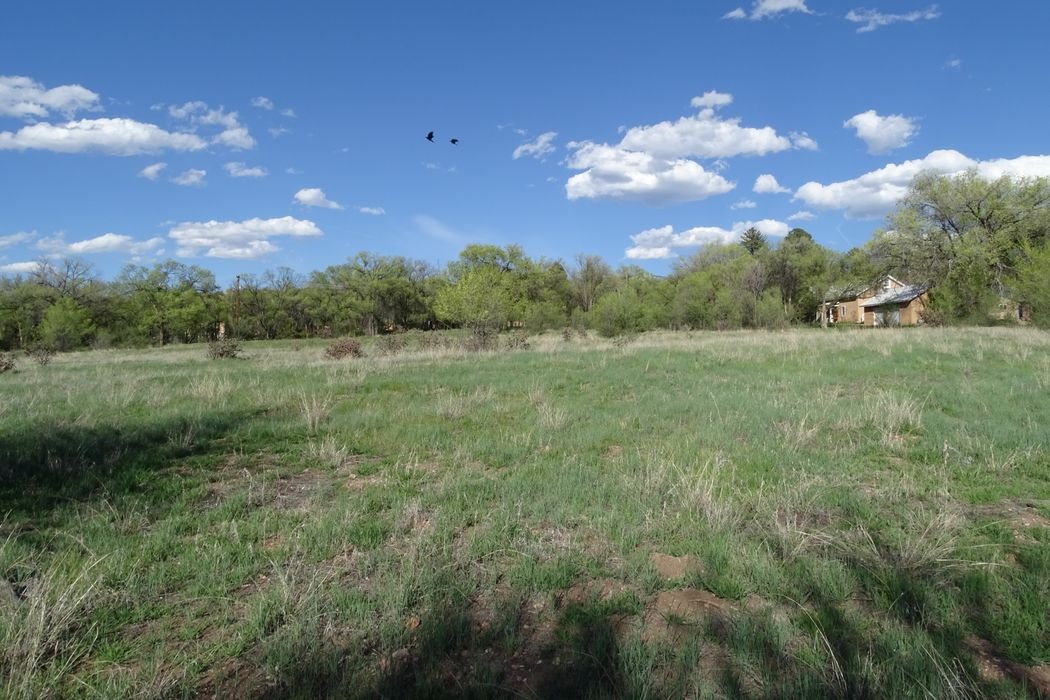 167-C Tesuque Village Road Santa Fe, NM 87506