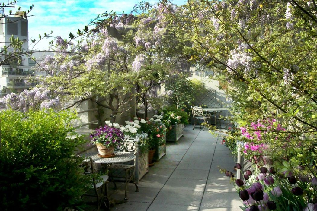 820 park avenue ph new york ny 10021 sotheby 39 s for 70 park terrace east new york ny