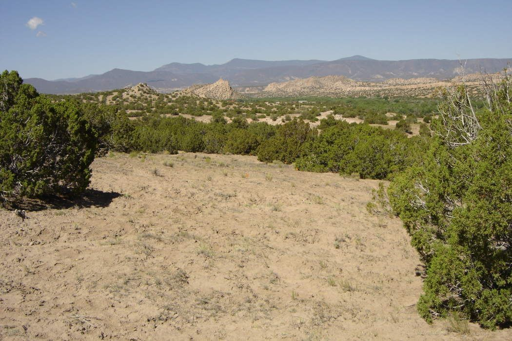 Lot 5, Rancho de San Juan
