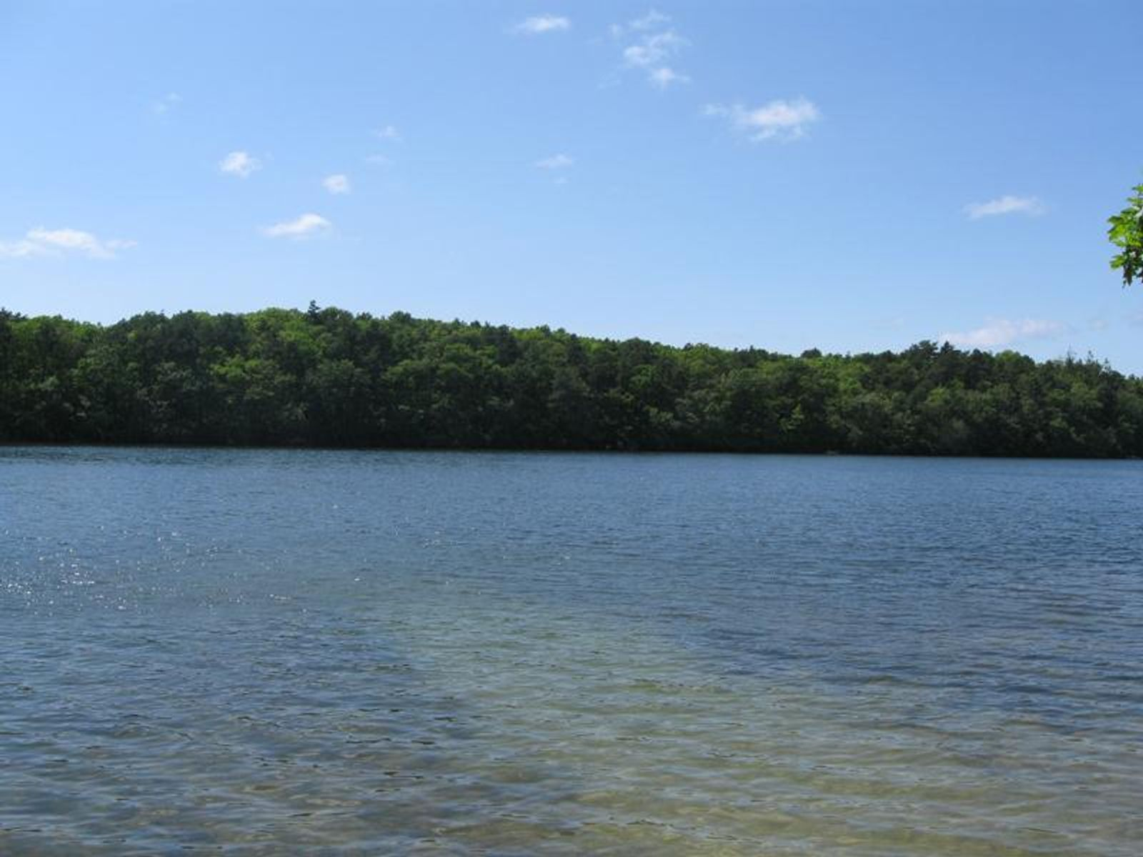 Eight Acres on Crooked Pond