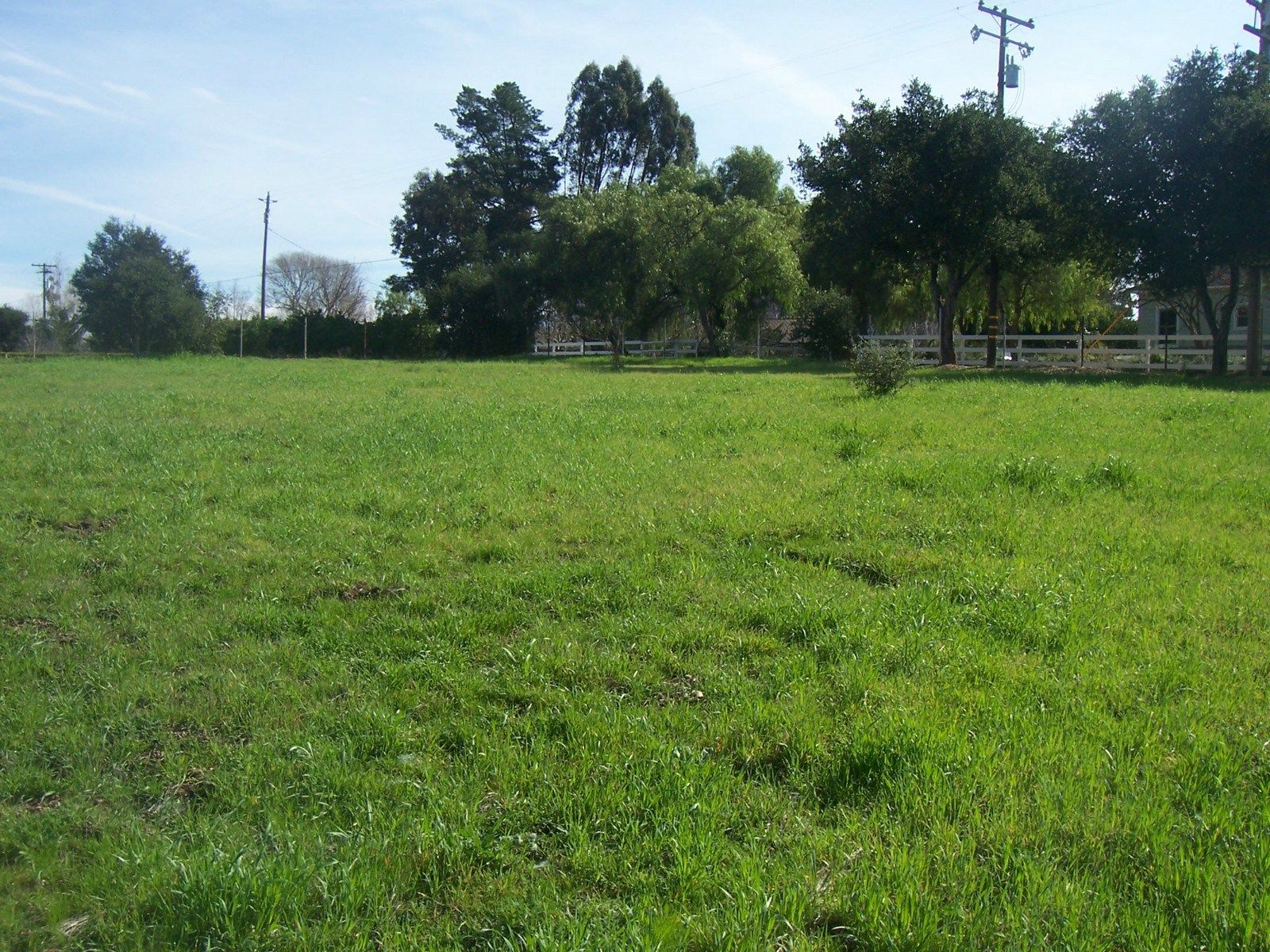Lovely One Acre Parcel