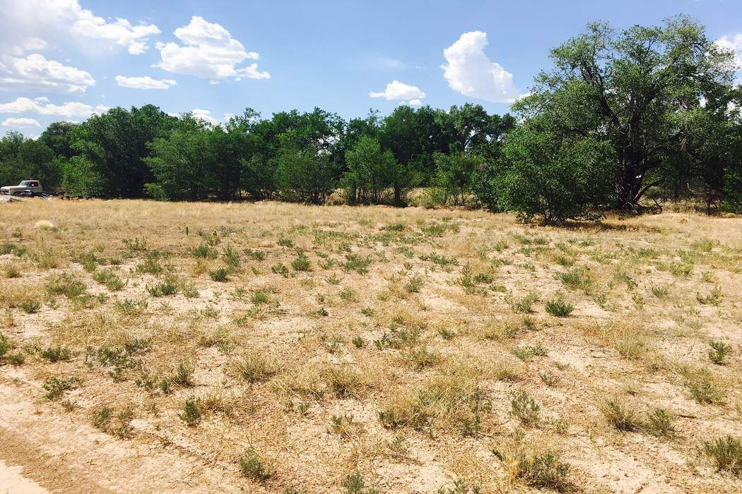 Lot 2, Llano Verde Road