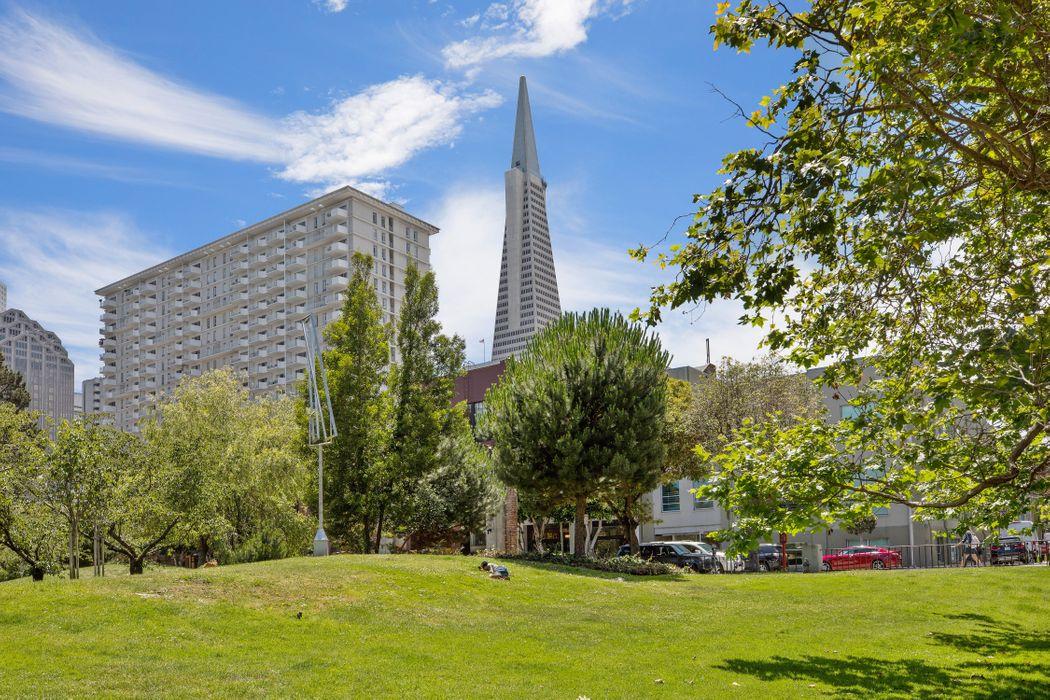 Dramatic Indoor / Outdoor Living San Francisco, CA 94111