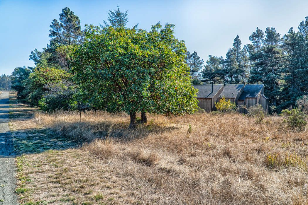 41179 Deer Trail The Sea Ranch, CA 95497