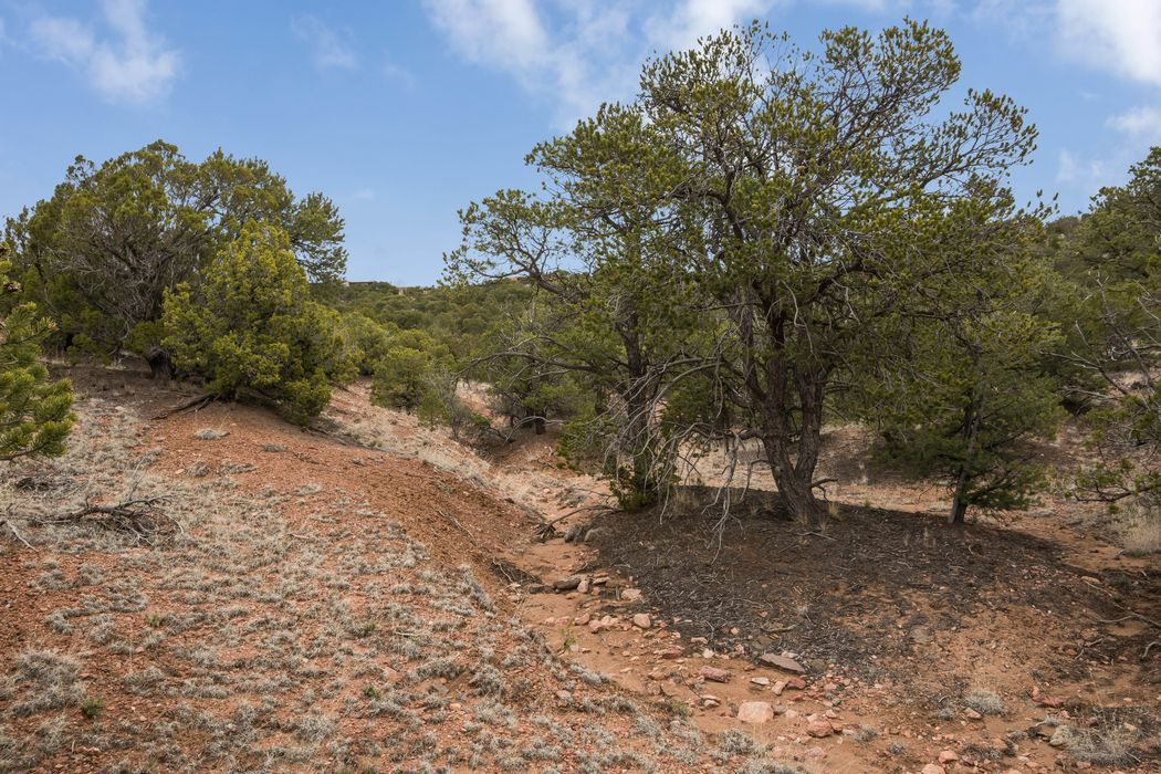 4 Trails End Santa Fe, NM 87501
