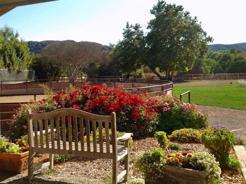 Carmel Equestrian Living at Mid Valley