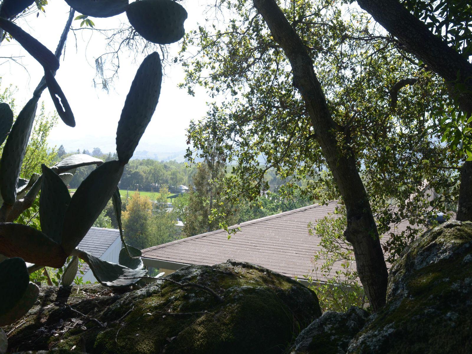 Hillside Hideway