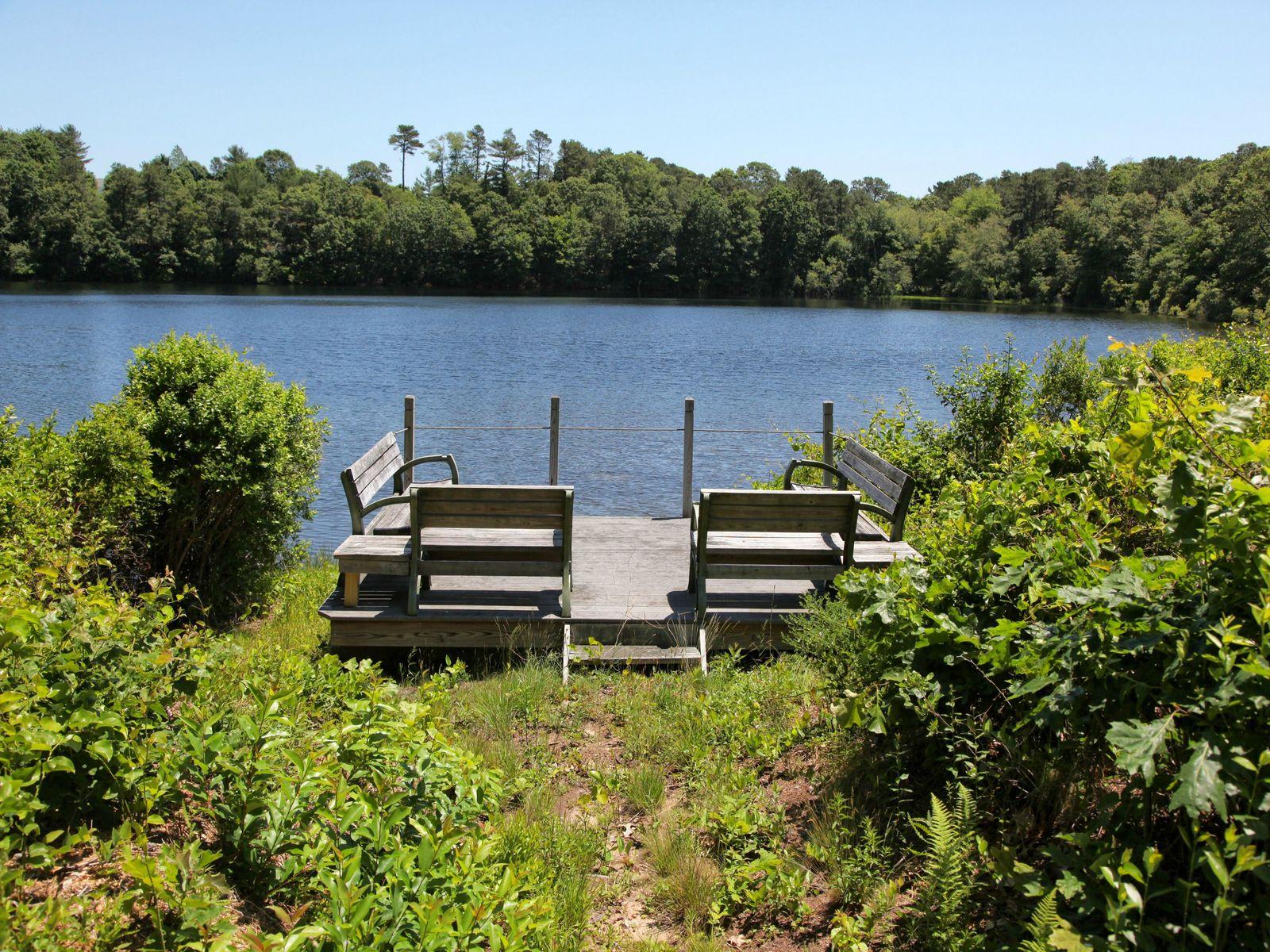 Contemporary Cape with Pond Views