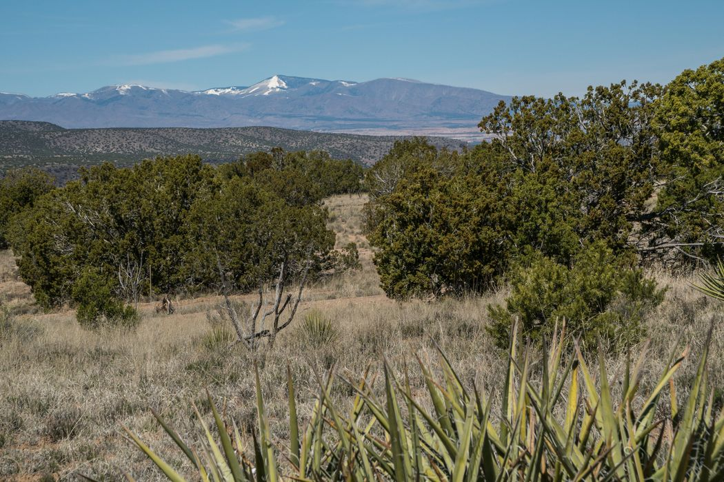 42 Plaza Del Centro - Lot 40 Santa Fe, NM 87506