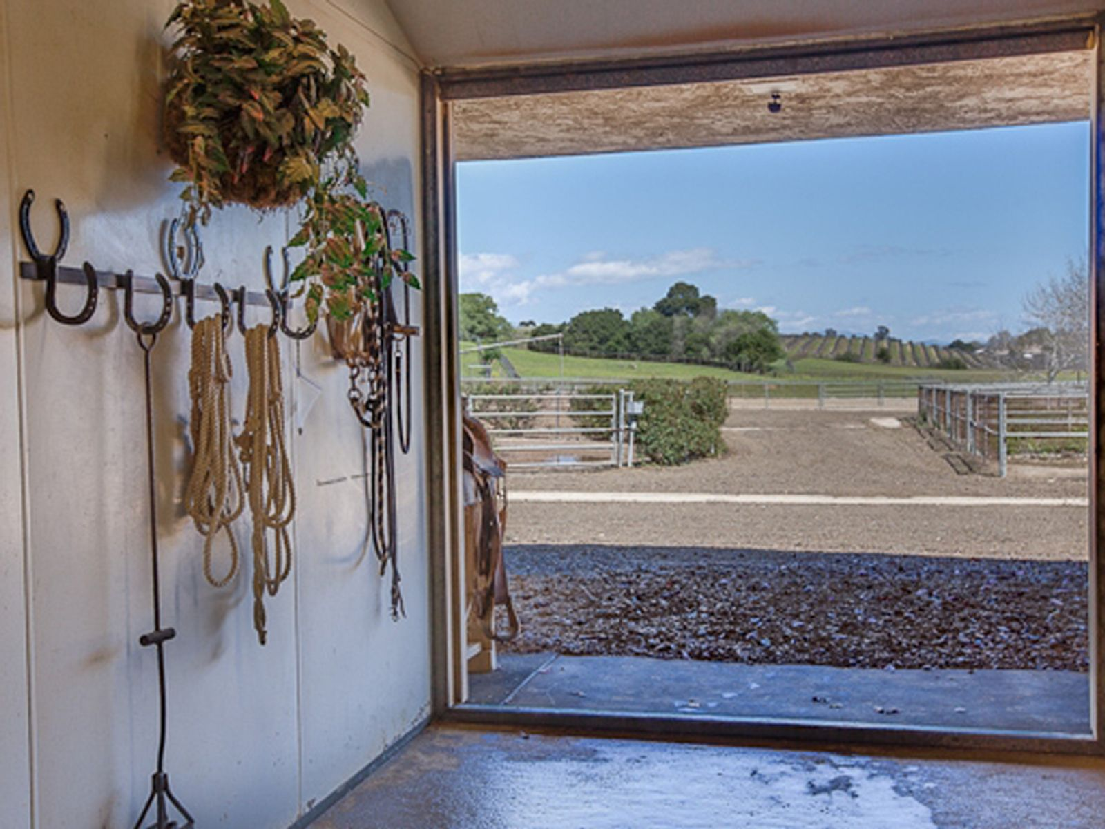 Beautiful Equestrian Compound
