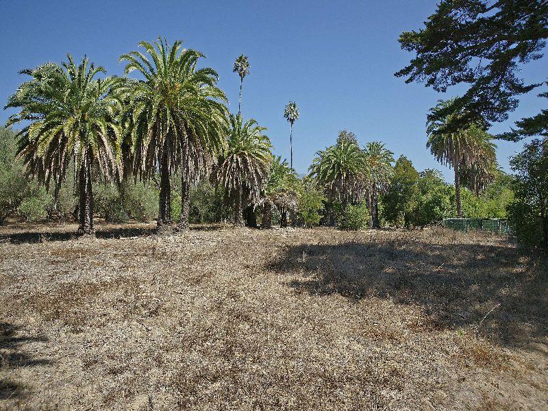 Prime Montecito Parcel
