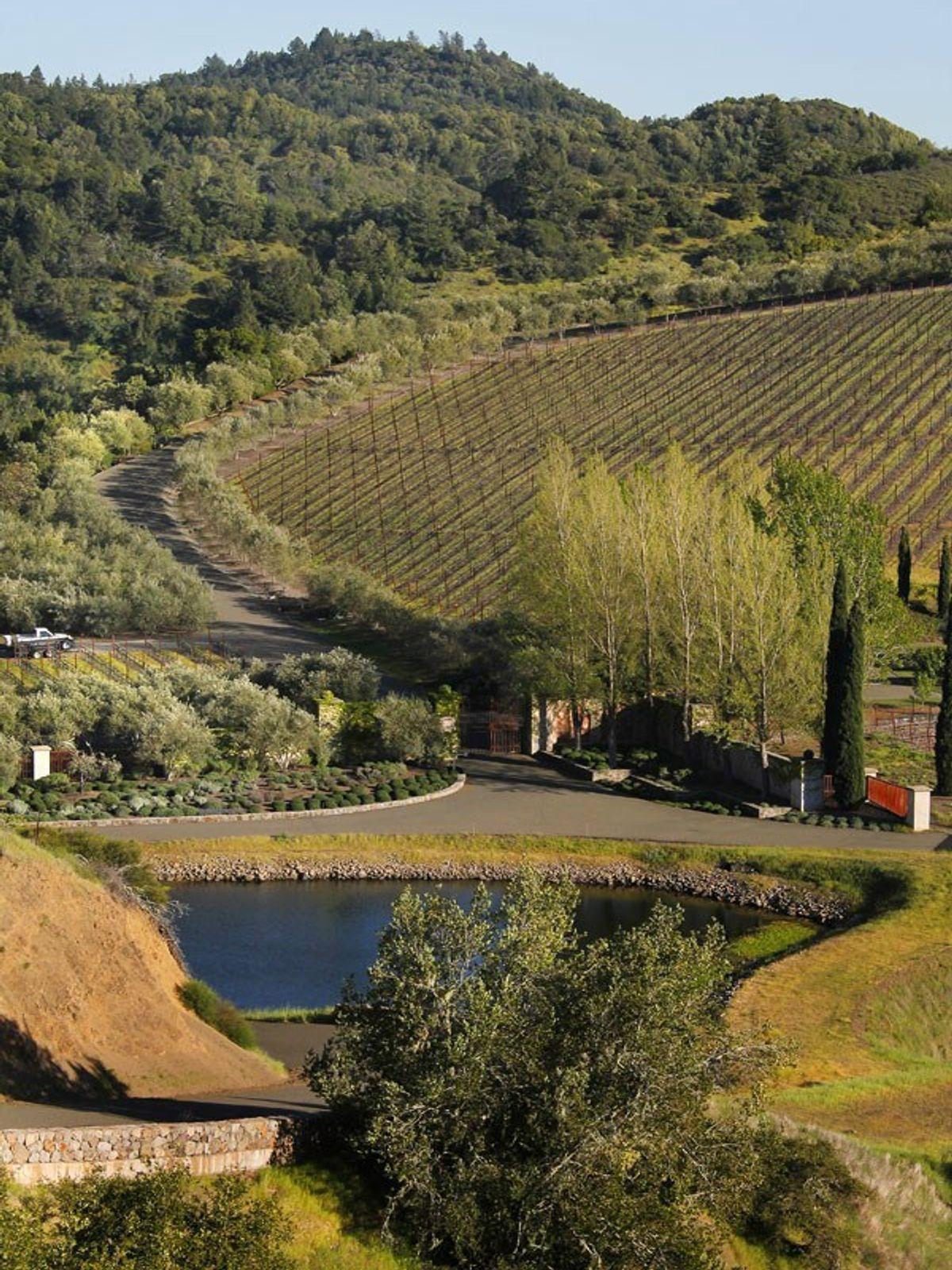 Napa Italian Country Home