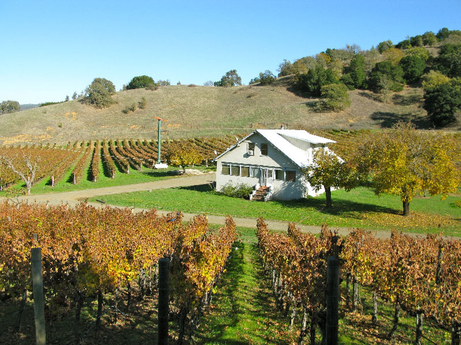 St. Helena Winery For Sale, Saint Helena CA Ranch / Farm - Sonoma - Napa Real Estate