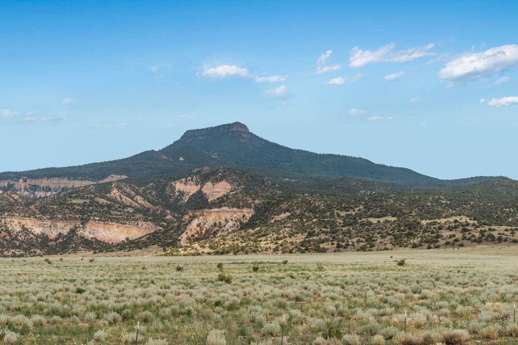 0 State Hwy 96 Youngsville, NM 87064